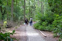 Blote Voetenpad, Bergen op Zoom, The Netherlands