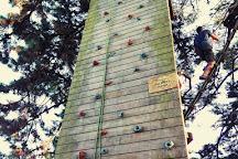 Piriac Adventure Tree climbing, Piriac-sur-Mer, France