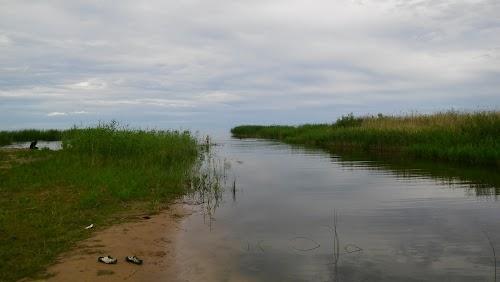 Looduslik koht