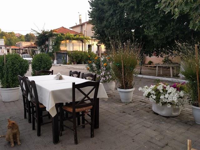 Kolokithas Family Taverna Restaurant
