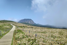 Yeongsil Trail, Jeju Island, South Korea