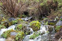 Parque Nacional Laguna del Laja, Antuco, Chile