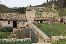 Bosco di San Francesco, Assisi, Italy