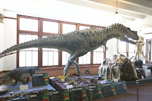 Bollinger County Museum of Natural History, Marble Hill, United States