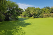 Sweetwater Wetlands Park, Tucson, United States