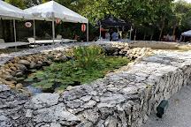 Ichimura Miami Japanese Garden, Miami, United States