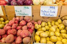 Piedmont Triad Farmers Market, Colfax, United States