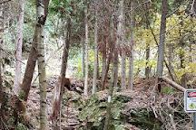 Spirit Rock Conservation Area, Wiarton, Canada