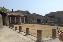 Casa del Salone Nero, Ercolano, Italy