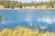 Trout Lake Trail, Yellowstone National Park, United States