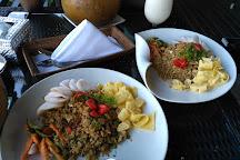 Tegalalang Rice Terrace, Ubud, Indonesia