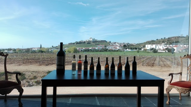 Tiago Cabaco Wines