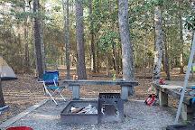 Village Creek State Park, Lumberton, United States