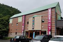 Shosenkyokageenomori Museum, Kofu, Japan