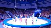 Цирк на фото Тюмени