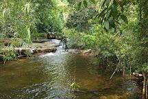 Peam Krasop Wildlife Sanctuary, Koh Kong, Cambodia