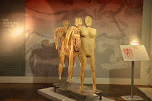 REAL BODIES at Bally's, Las Vegas, United States