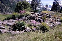 Giardino Botanico Alpino Paradisia, Cogne, Italy