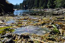 Saltery Bay Provincial Park, Saltery Bay, Canada