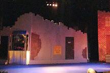 Timber Lake Playhouse, Mount Carroll, United States
