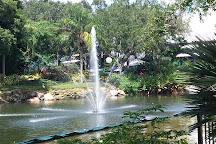 Mako, Orlando, United States