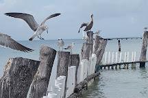 Tortugranja, Isla Mujeres, Mexico
