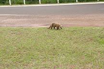 Poderes Park, Campo Grande, Brazil