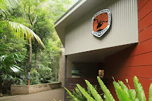 Minnamurra Rainforest Centre, Jamberoo, Australia