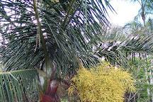 Ranomafana Arboretum, Ranomafana, Madagascar
