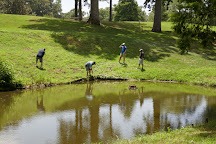 Golden Horseshoe Golf Club, Williamsburg, United States