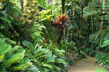 Botanical Gardens, Cairns, Australia