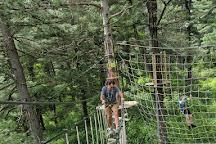 Go Ape Zipline & Adventure Park, Allison Park, United States
