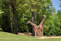 North Carolina Zoo, Asheboro, United States