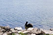 Goose Island State Park, Rockport, United States