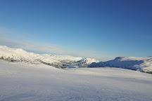 Vidda Runners Huskies, Alta, Norway