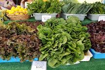 Hillcrest Farmers Market, San Diego, United States