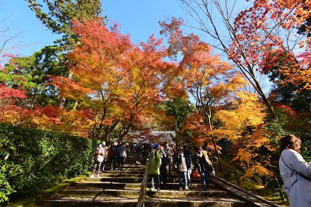 Zenrinji(Eikan-do), 48 Eikandocho, Sakyo Ward, Kyoto, Kyoto Prefecture 606-8445, Giappone