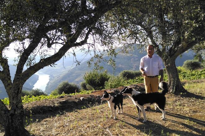 Jorge Barefoot - Wine & Tours, Pinhao, Portugal