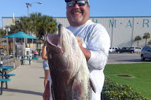 The Reel Contender Fishing Charter, Panama City Beach, United States
