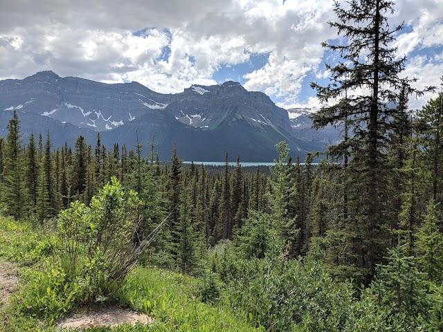 Hector Lake Viewpoint