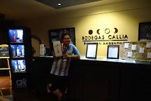 Bodegas Callia, Caucete, Argentina