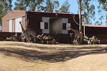 Zoo Santo Inacio, Vila Nova de Gaia, Portugal
