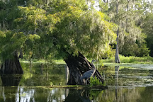 LeBlanc Swamp Tours, Saint Martinville, United States