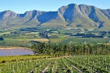 Hermanus Wine Hoppers, Hermanus, South Africa