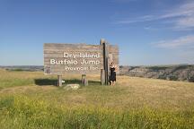Dry Island Buffalo Jump Provincial Park, Elnora, Canada