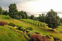 Point of the Bluff Vineyards, Pulteney, United States