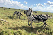 Nyanda Safaris, Morogoro, Tanzania