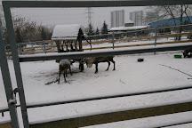 Chelyabinsk Zoo, Chelyabinsk, Russia
