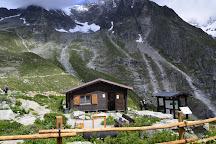 Saussurea Alpine Botanical Garden, Courmayeur, Italy