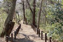 Oi Benten forest, Fujimino, Japan